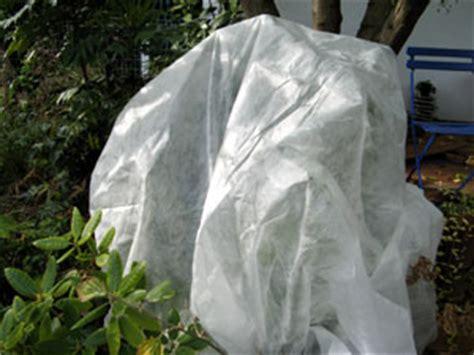 voile d hivernage protection pour plantes en pot et semis