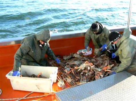 fr3 cuisine midi en pêche aux crabes dans la mangrove doovi