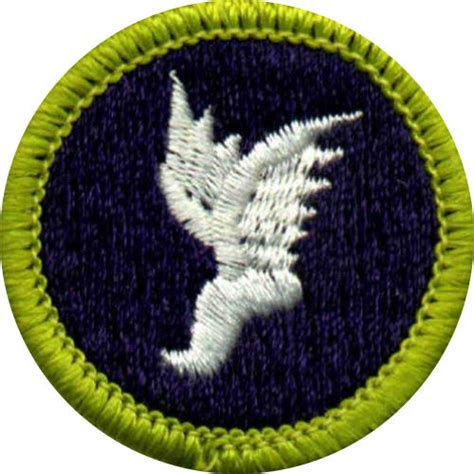 Astronomy Merit Badge (page 4)  Pics About Space