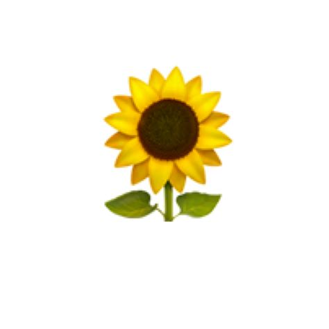 emoji sunflower emojis cute cuteemoji yellow green