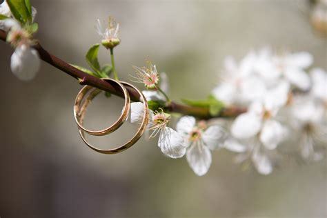 wedding ring wallpapers hd free images download