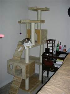 Arbre à Chat Fait Maison : bricolage faire soi m me son arbre chat cologique et conomique consommer durable ~ Melissatoandfro.com Idées de Décoration