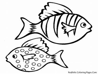Fish Drawing Simple Clipart Templates Cartoon Coloring
