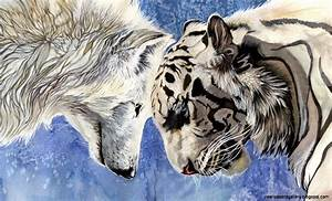 Wolf Quotes 3 F... Wolf Vs Tiger Quotes