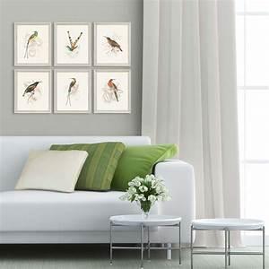 Hummingbirds, Framed, Wall, Art, Set, Of, 6, -, 13, X, 11
