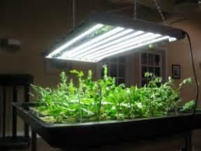 best spices to grow t5 lights t5 grow light fixtures