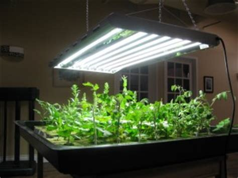 hydroponics lights archives hydroponics equipment co