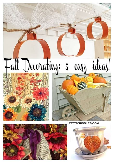 Decorating Ideas For Fall 2015 by Fall Decorating 5 Easy Ideas Pet Scribbles