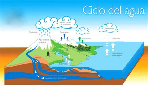 10 Características Del Ciclo Del Agua