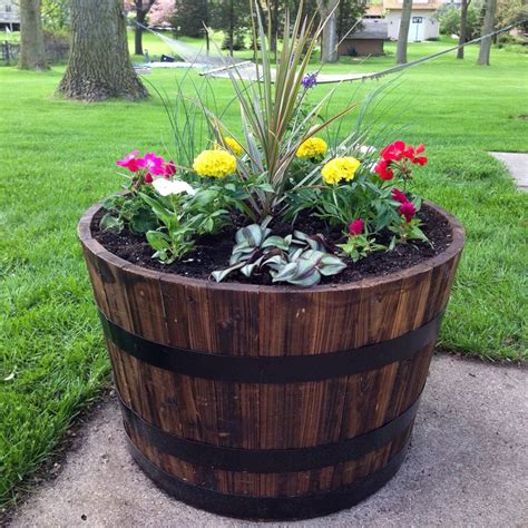 whiskey barrel planter garden pinterest whiskey barrels planters  whiskey barrel planter