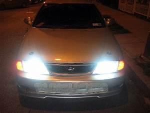 1995 1996 1997 1998 1999 Nissan Sentra Bright Light Bulbs