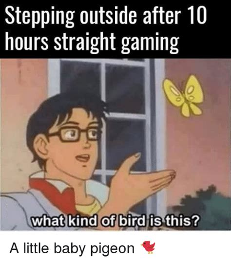 Is This A Pigeon Meme Template 25 Best Memes About What Of Bird Is This What