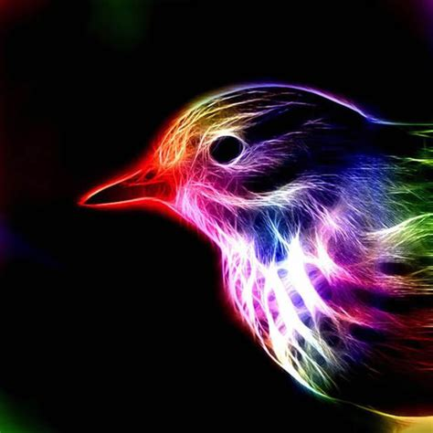 espectaculares imagenes de animales en colores