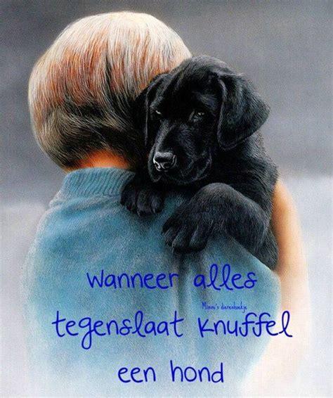 mooie teksten images  pinterest dutch quotes