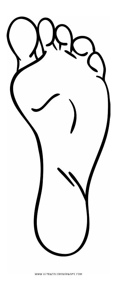 Foot Coloring Left Pages Clipart Line Feet