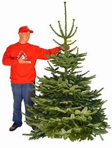 Weihnachtsbaum Entsorgen Berlin : best 28 weihnachtsbaum lieferservice tannenbaum ~ Lizthompson.info Haus und Dekorationen