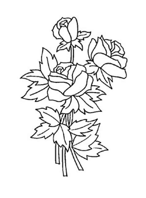 ausmalbilder rosen  rosen malvorlagen