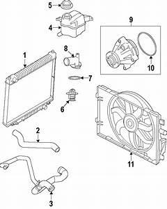Ford Mustang Radiator Coolant Hose  Lower   4 6 Liter