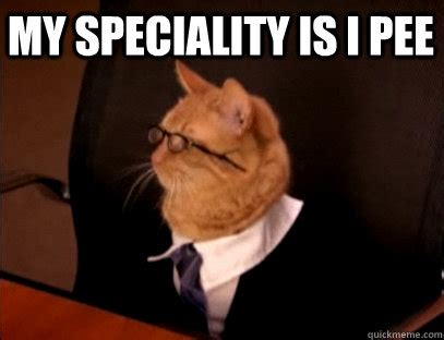 Pee Meme - my speciality is i pee lawyer cat quickmeme