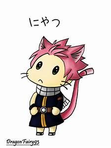 Fairy Tail - Chibi Neko Natsu ~Nyatsu~ by DragonFairy93 on ...