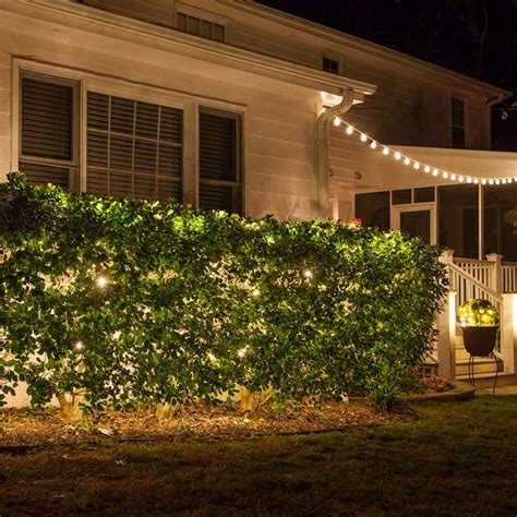 how to attach net lights to hedges net lights installation guide