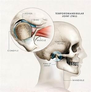 Dentalaka  Temporomandibular Disorders Lecture Note On