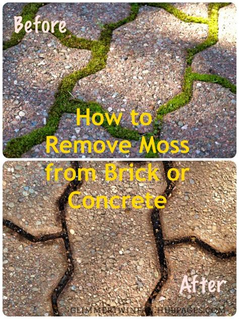 how to remove moss from brick or concrete dengarden