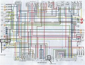 1994 Fzr 1000 Wiring Diagram Color Free Download Diagrams Fair Yamaha R1 Wiring Diagram