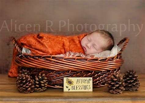 image result  fall themed baby shoots newborn shoots