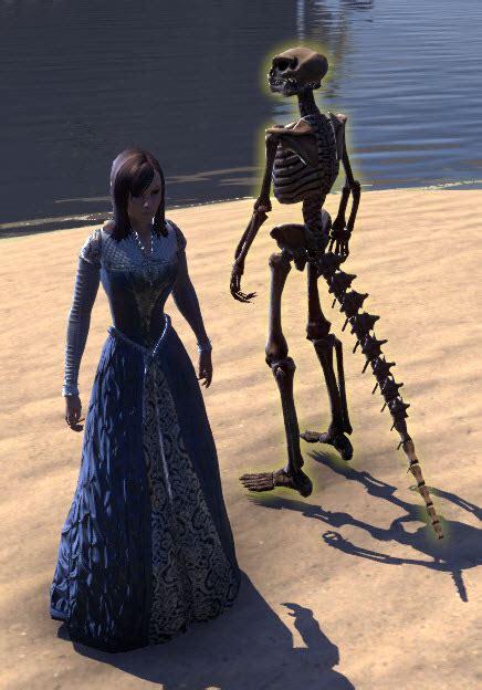 eso fashion target skeleton argonian elder scrolls
