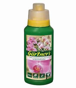 Dünger Für Orchideen : g rtner 39 s g rtner 39 s orchideen d nger 250 ml g nstig online ~ A.2002-acura-tl-radio.info Haus und Dekorationen