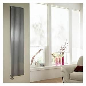 Radiateur Eau Chaude Vertical : altai vertical double hyd radiateur chauffage central ~ Melissatoandfro.com Idées de Décoration