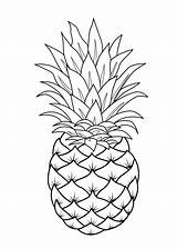 Coloring Fruit Fruits Printable Pineapple Drawing Procoloring Sheets Adult sketch template