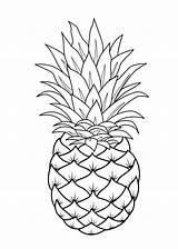 Frutas Dibujos Coloring Colorear Printable Pintar Procoloring Fruit Dibujo Imprimir Ananas Guardado Desde sketch template