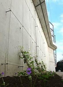 Rankhilfe Für Kletterrosen : spannseile rankhilfe edelstahl sets in seilspanntechnik ~ Michelbontemps.com Haus und Dekorationen