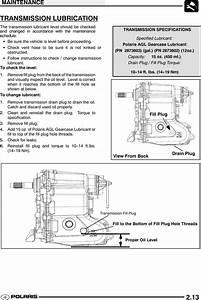 2005 Polari Sportsman 700 Wiring Diagram