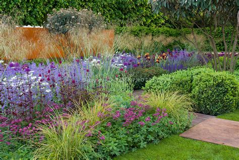mass planting mass planting perennials astrantia ornamental grasses irises in gorgeous garden with lawn