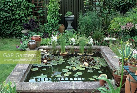 Gap Gardens  Small Raised Garden Pond  Rosedale, Suffolk