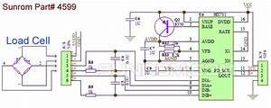 Loadcell Sensor 24 Bit Adc