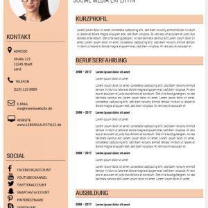 Moderner Lebenslauf Muster by Bewerbung Lebenslauf Muster 16 Bewerbungswissen Net