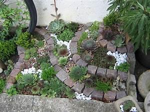 Steingarten Bilder Beispiele : steingarten mit dachwurzen garten ~ Watch28wear.com Haus und Dekorationen