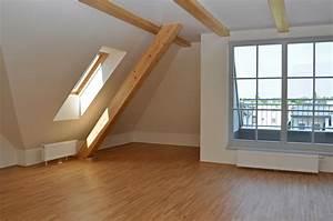 Lessiver Plafond Avant Peinture : conseil pour peindre un plafond meilleures images d ~ Premium-room.com Idées de Décoration