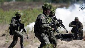 Poor little NATO vs big bad Russia: a disinformation ...