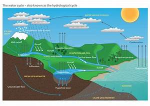 Explain The Water Cycle With Diagrams