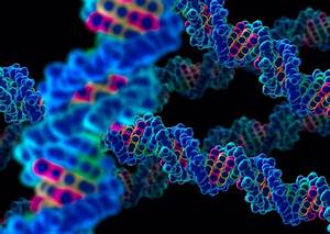 Dna Sequencing Can Give Everyone A Genetic Passport