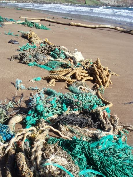 hawaii nets  energy program orrs marine debris program