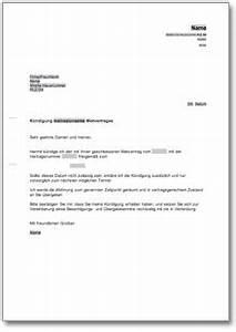 Kündigung Mietvertrag Wegen Eigenbedarf : k ndigung mietvertrag fristgem mieter de ~ Lizthompson.info Haus und Dekorationen