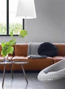 Deco Avec Du Gris : couleur salon cosy gris perle et coussins gris anthracite ~ Zukunftsfamilie.com Idées de Décoration