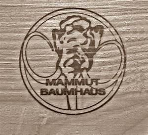Baumhaus Bauen Ohne Baum Zu Beschädigen : home mammut baumhaus baumr ume ~ Orissabook.com Haus und Dekorationen