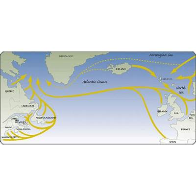 Salmon Migration Routes Images - Reverse Search